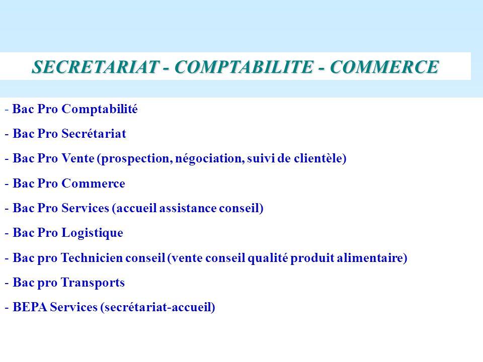 - Bac Pro Comptabilité - Bac Pro Secrétariat - Bac Pro Vente (prospection, négociation, suivi de clientèle) - Bac Pro Commerce - Bac Pro Services (acc