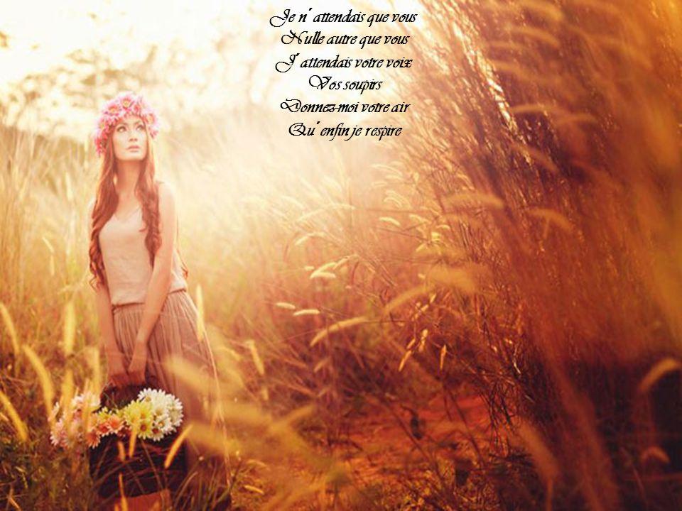 Je n´attendais que vous Je n´espérais que vous J´ai marché si longtemps Je viens de loin Le monde était grand Et long le chemin