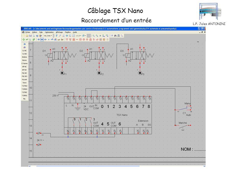 L.P. Jules ANTONINI Câblage TSX Nano Raccordement des entrées
