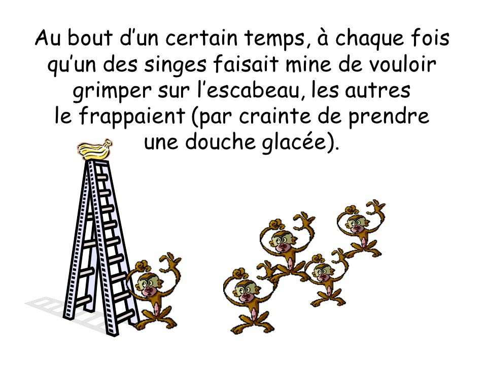 Au bout dun certain temps, à chaque fois quun des singes faisait mine de vouloir grimper sur lescabeau, les autres le frappaient (par crainte de prendre une douche glacée).
