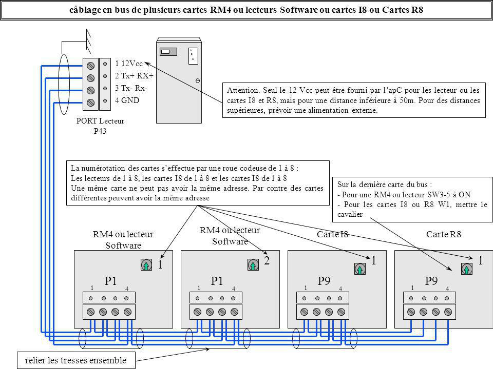 câblage en bus de plusieurs cartes RM4 ou lecteurs Software ou cartes I8 ou Cartes R8 A P C 4 GND 1 12Vcc 3 Tx- Rx- PORT Lecteur P43 2 Tx+ RX+ P1 reli