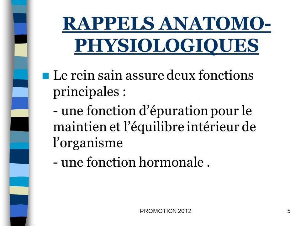 RAPPELS ANATOMO- PHYSIOLOGIQUES Le rein sain assure deux fonctions principales : - une fonction dépuration pour le maintien et léquilibre intérieur de