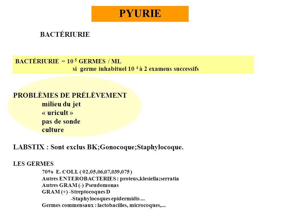 PROBLÈMES DE PRÉLÈVEMENT milieu du jet « uricult » pas de sonde culture LABSTIX : Sont exclus BK;Gonocoque;Staphylocoque. LES GERMES 70% E. COLI. ( 02