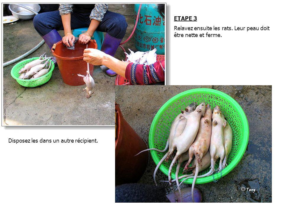 ETAPE 3 Relavez ensuite les rats.Leur peau doit être nette et ferme.