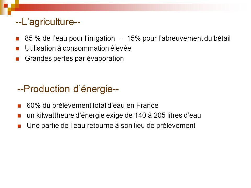 --Lagriculture-- 85 % de leau pour lirrigation - 15% pour labreuvement du bétail Utilisation à consommation élevée Grandes pertes par évaporation --Pr