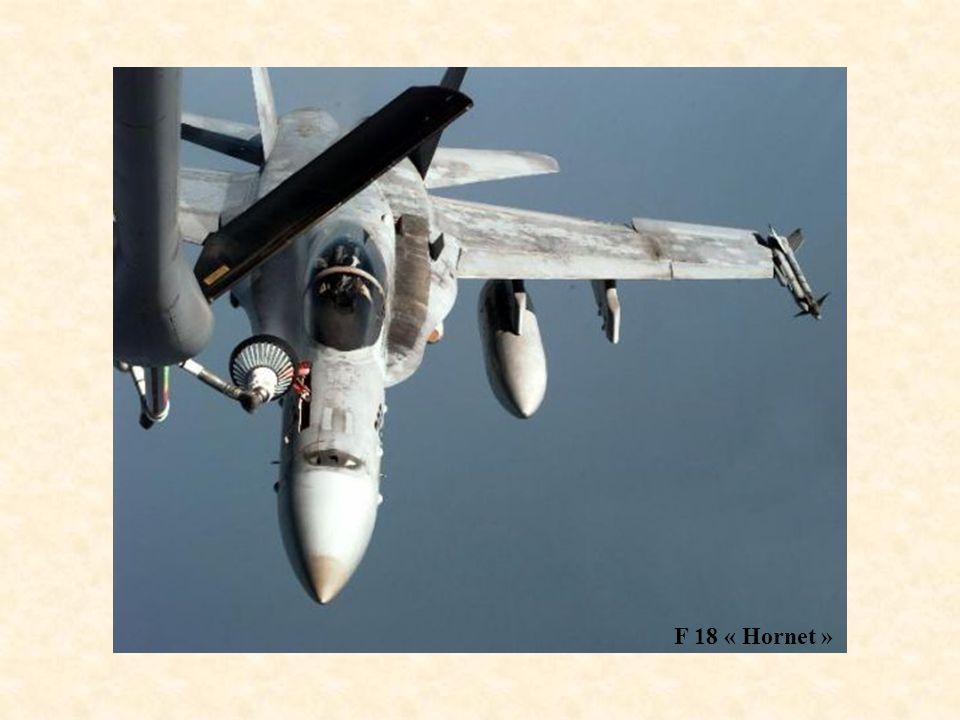 F 18 « Hornet »