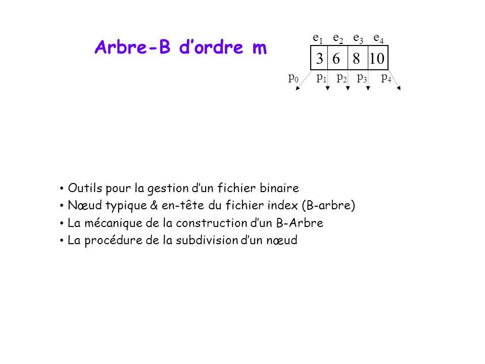 Arbre-B dordre m Outils pour la gestion dun fichier binaire Nœud typique & en-tête du fichier index (B-arbre) La mécanique de la construction dun B-Arbre La procédure de la subdivision dun nœud 3 6 8 10 p0p0 p1p1 p2p2 p3p3 p4p4 e1e1 e2e2 e3e3 e4e4