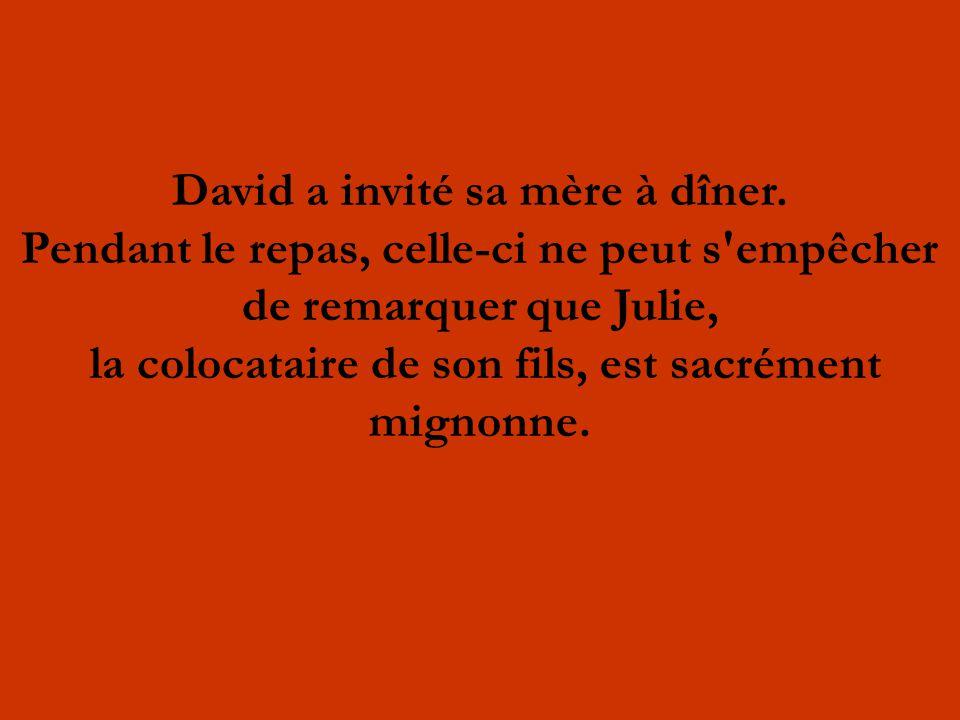 David a invité sa mère à dîner. Pendant le repas, celle-ci ne peut s'empêcher de remarquer que Julie, la colocataire de son fils, est sacrément mignon
