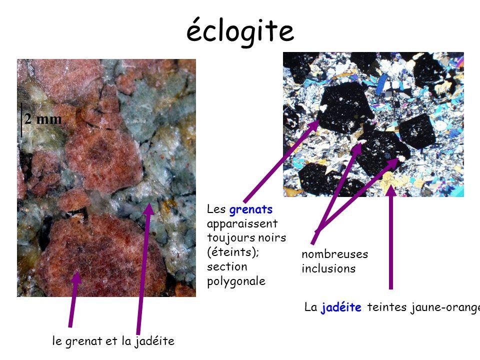 le grenat et la jadéite nombreuses inclusions Les grenats apparaissent toujours noirs (éteints); section polygonale La jadéite teintes jaune-orangé