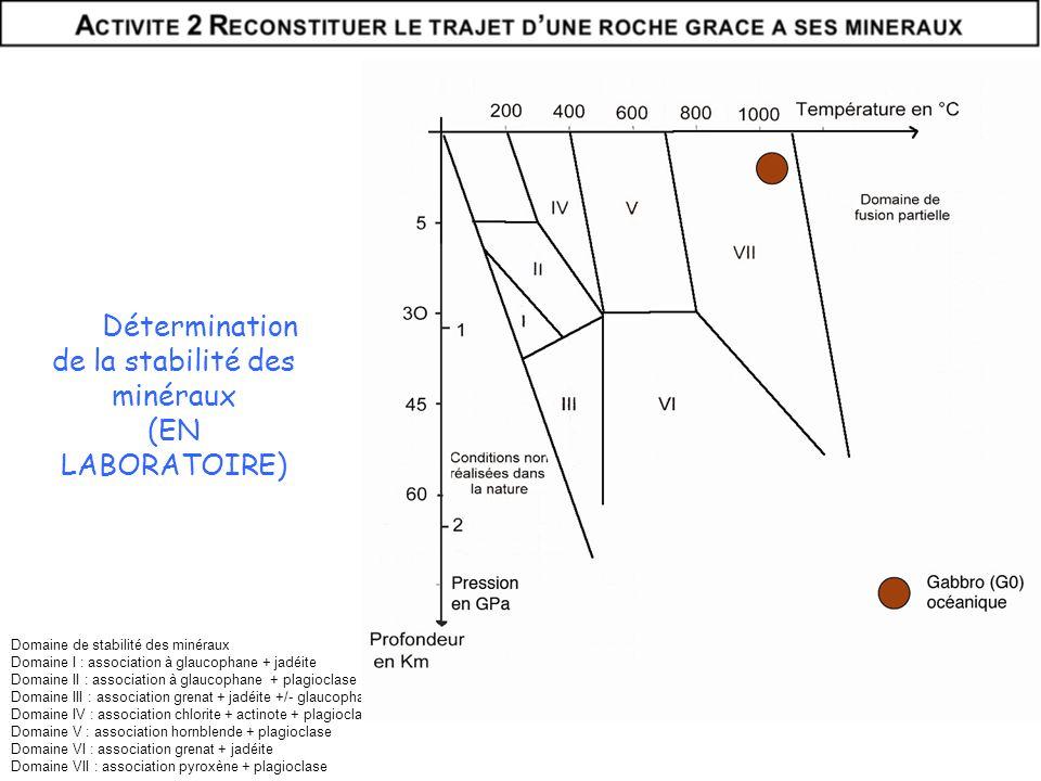 Domaine de stabilité des minéraux Domaine I : association à glaucophane + jadéite Domaine II : association à glaucophane + plagioclase Domaine III : a