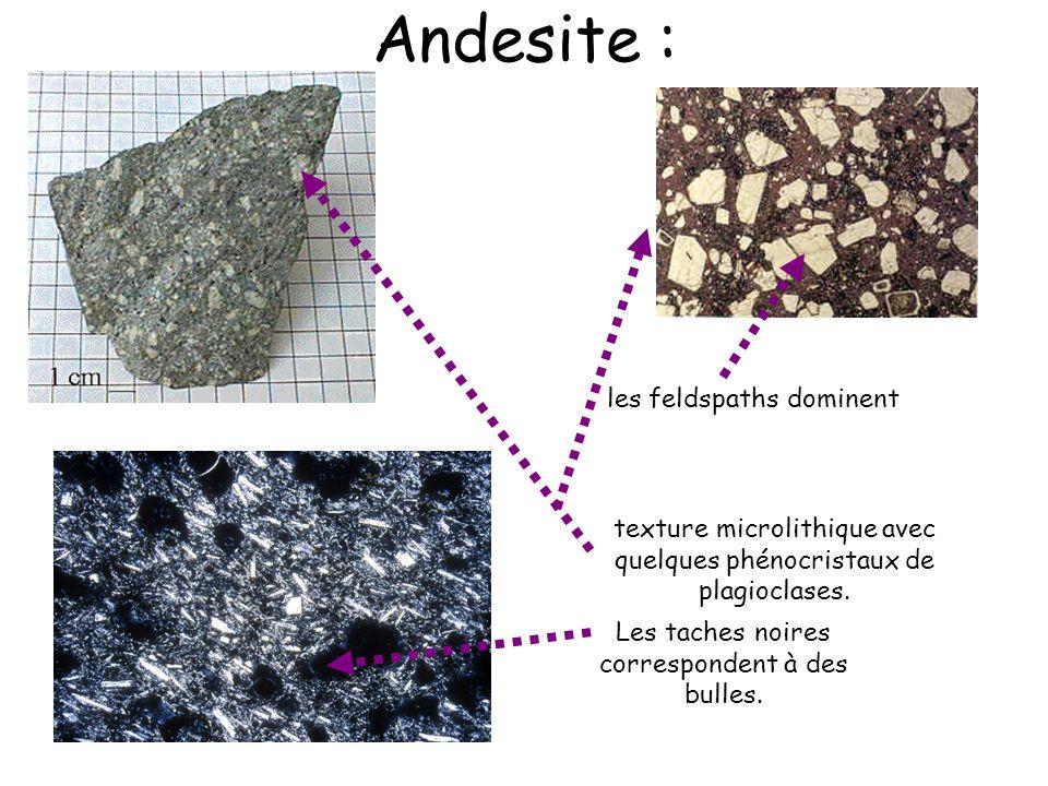 Andesite : les feldspaths dominent texture microlithique avec quelques phénocristaux de plagioclases. Les taches noires correspondent à des bulles.