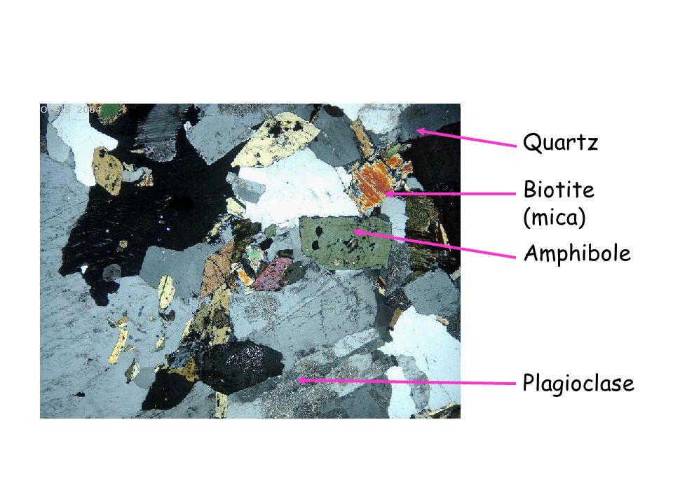 Quartz Amphibole Plagioclase Biotite (mica)