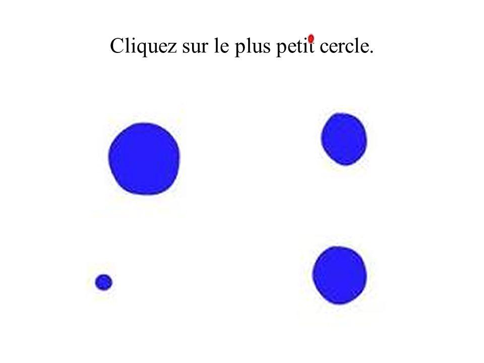 Cliquez sur le plus petit cercle.