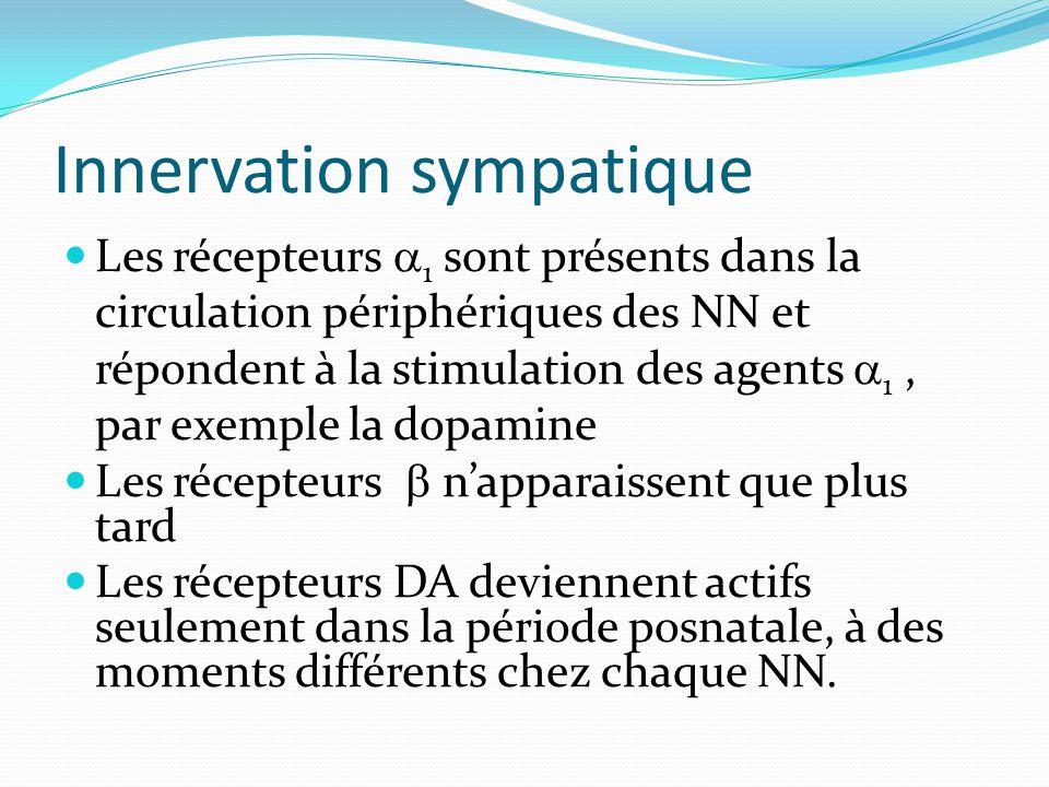 Innervation sympatique Les récepteurs 1 sont présents dans la circulation périphériques des NN et répondent à la stimulation des agents 1, par exemple la dopamine Les récepteurs napparaissent que plus tard Les récepteurs DA deviennent actifs seulement dans la période posnatale, à des moments différents chez chaque NN.