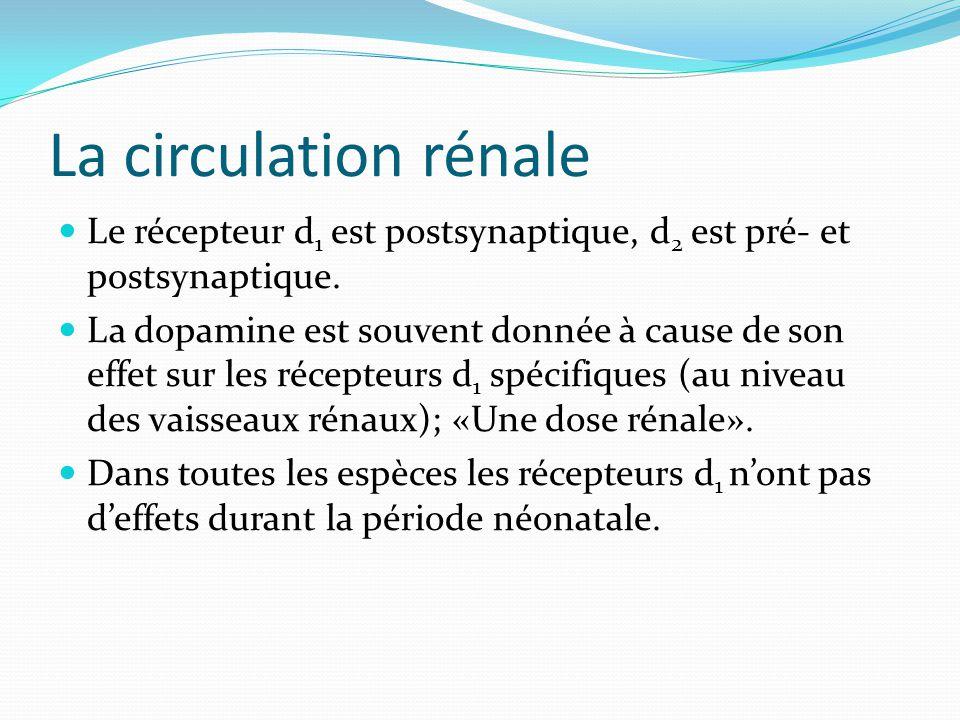 La circulation rénale Le récepteur d 1 est postsynaptique, d 2 est pré- et postsynaptique.