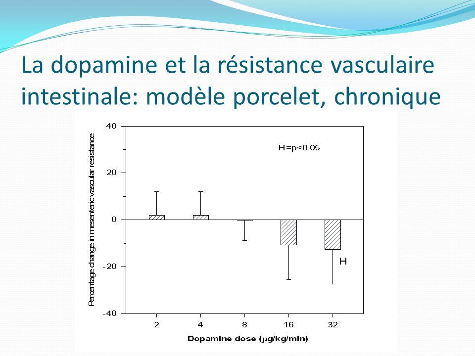 La dopamine et la résistance vasculaire intestinale: modèle porcelet, chronique