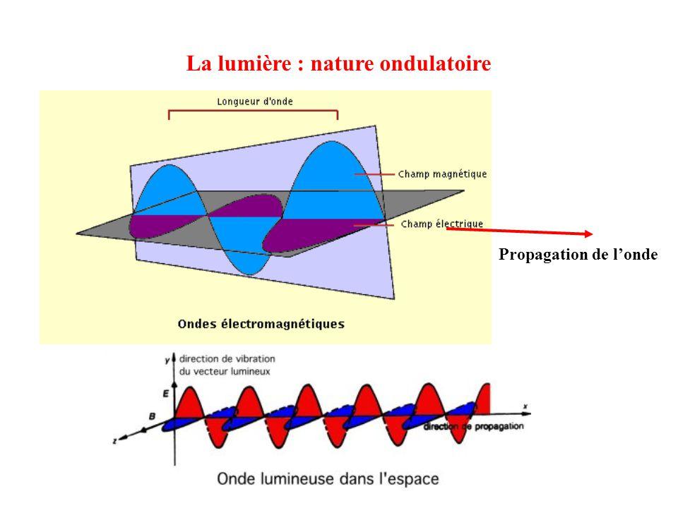 La lumière : nature ondulatoire Propagation de londe