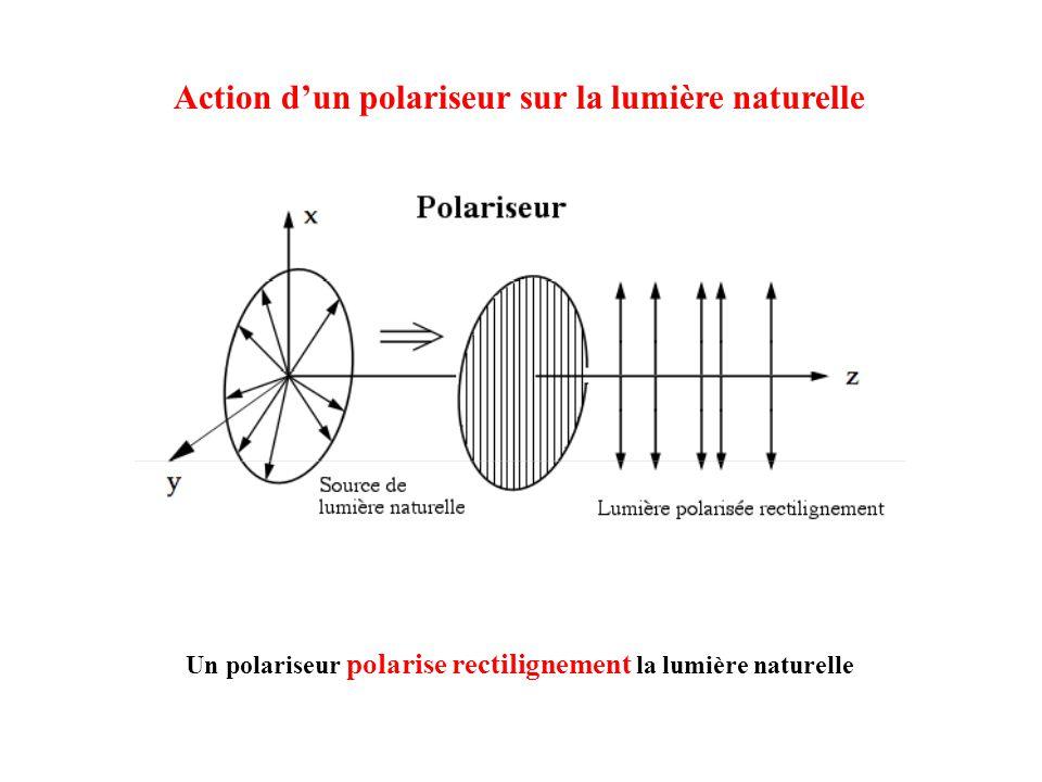Action dun polariseur sur la lumière naturelle Un polariseur polarise rectilignement la lumière naturelle