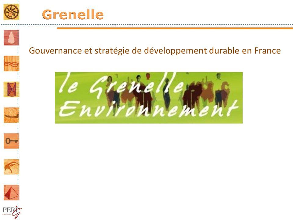 Gouvernance et stratégie de développement durable en France