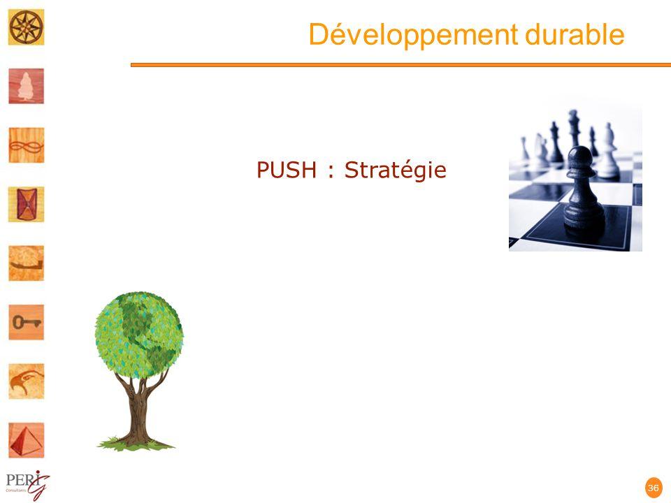 Développement durable 36 PUSH : Stratégie