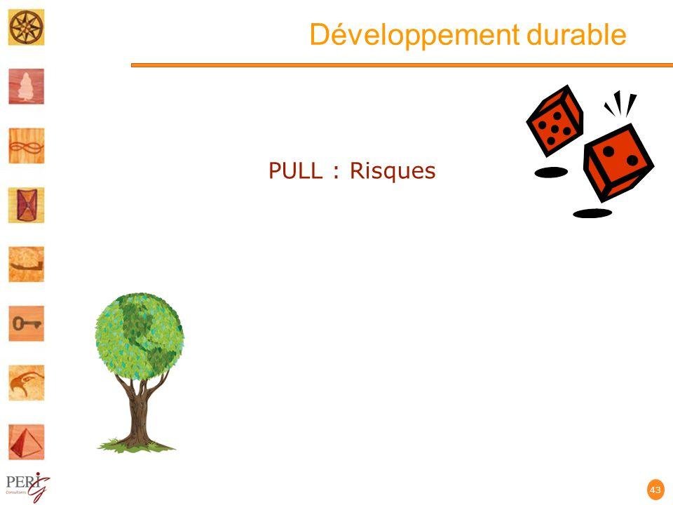 Développement durable 43 PULL : Risques