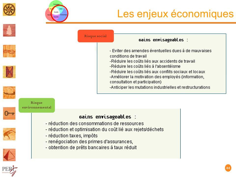 Les enjeux économiques 44 Risque social Risque environnemental