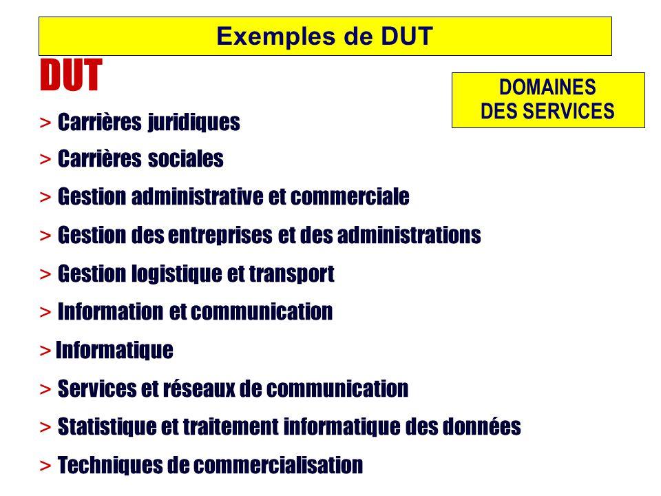 Exemples de DUT DOMAINES DES SERVICES DUT > Carrières juridiques > Carrières sociales > Gestion administrative et commerciale > Gestion des entreprise