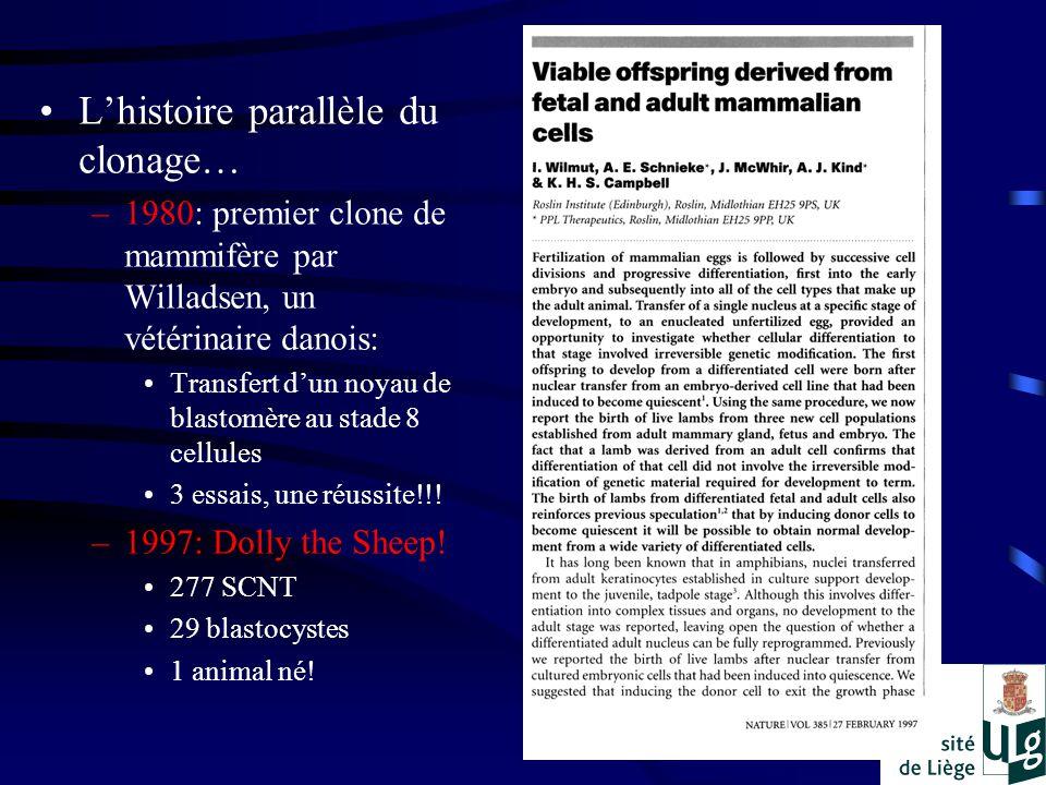 Lhistoire parallèle du clonage… –1980: premier clone de mammifère par Willadsen, un vétérinaire danois: Transfert dun noyau de blastomère au stade 8 cellules 3 essais, une réussite!!.