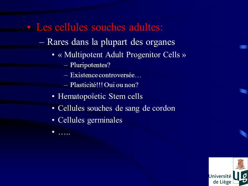 Les cellules souches adultes: –Rares dans la plupart des organes « Multipotent Adult Progenitor Cells » –Pluripotentes? –Existence controversée… –Plas