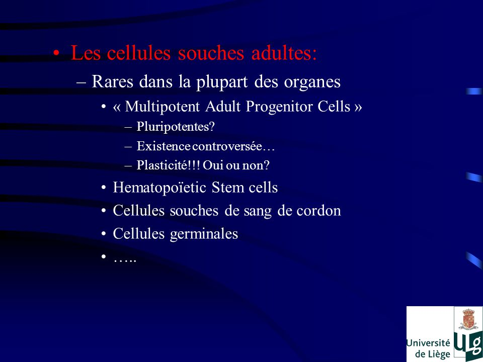 Les cellules souches adultes: –Rares dans la plupart des organes « Multipotent Adult Progenitor Cells » –Pluripotentes.