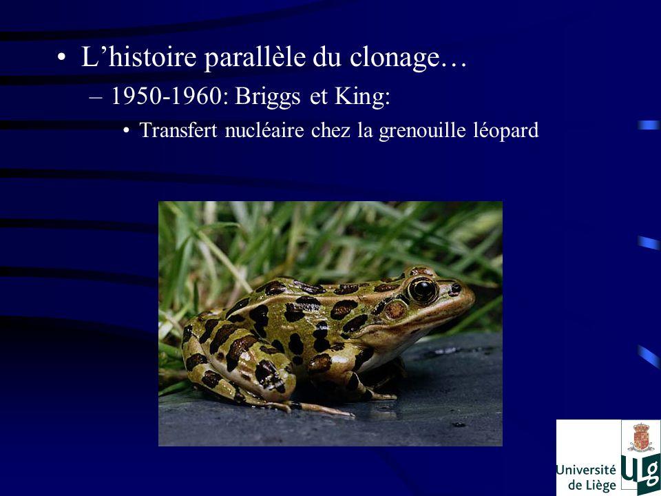Lhistoire parallèle du clonage… –1950-1960: Briggs et King: Transfert nucléaire chez la grenouille léopard