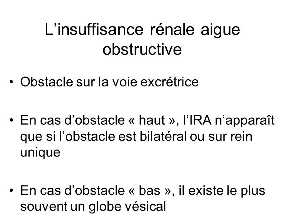 Linsuffisance rénale aigue obstructive Obstacle sur la voie excrétrice En cas dobstacle « haut », lIRA napparaît que si lobstacle est bilatéral ou sur rein unique En cas dobstacle « bas », il existe le plus souvent un globe vésical