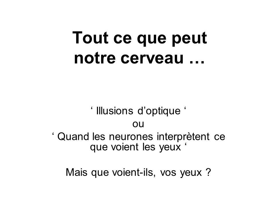 C´est la meilleure illusion d´optique.....