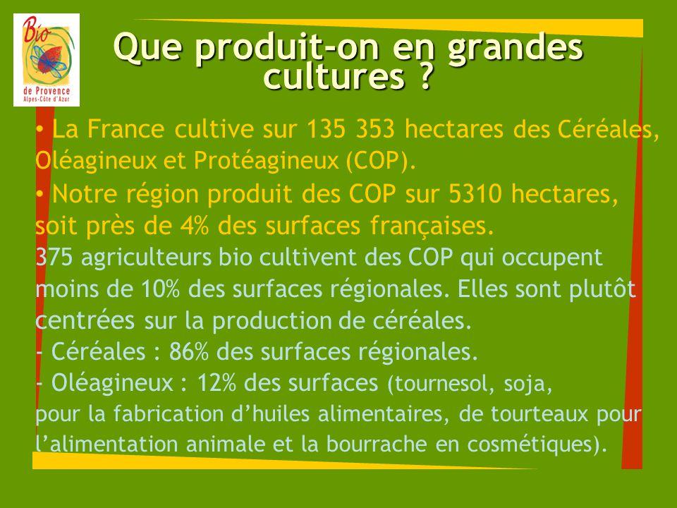 Que produit-on en grandes cultures ? La France cultive sur 135 353 hectares des Céréales, Oléagineux et Protéagineux (COP). Notre région produit des C