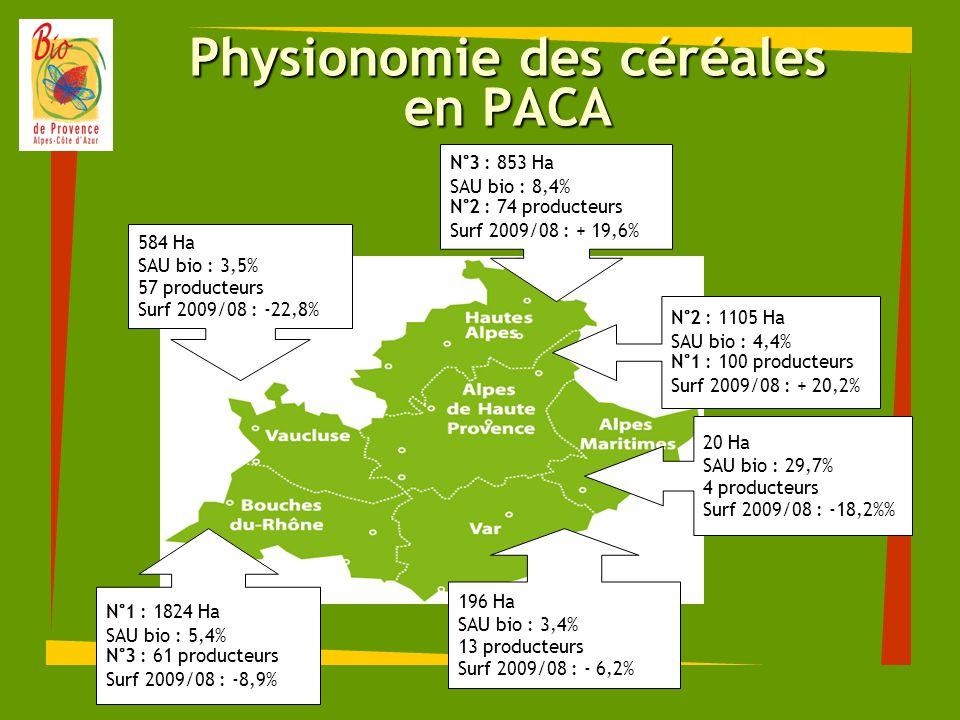 Physionomie des céréales en PACA N°3 : 853 Ha SAU bio : 8,4% N°2 : 74 producteurs Surf 2009/08 : + 19,6% 584 Ha SAU bio : 3,5% 57 producteurs Surf 200