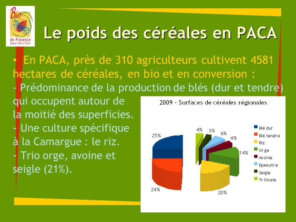 Le poids des céréales en PACA En PACA, près de 310 agriculteurs cultivent 4581 hectares de céréales, en bio et en conversion : - Prédominance de la pr