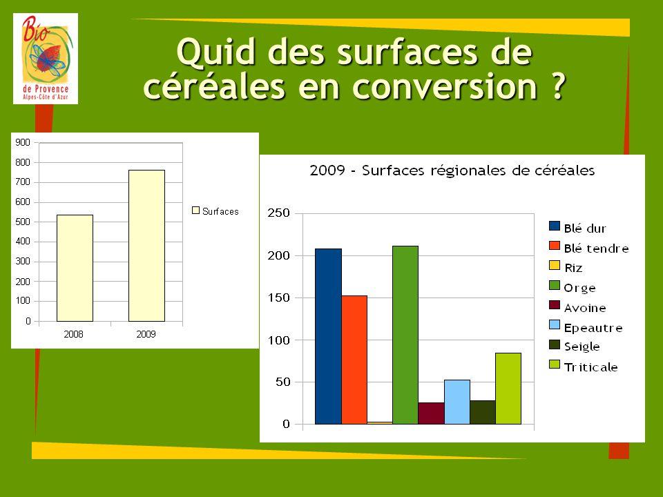 Quid des surfaces de céréales en conversion ?