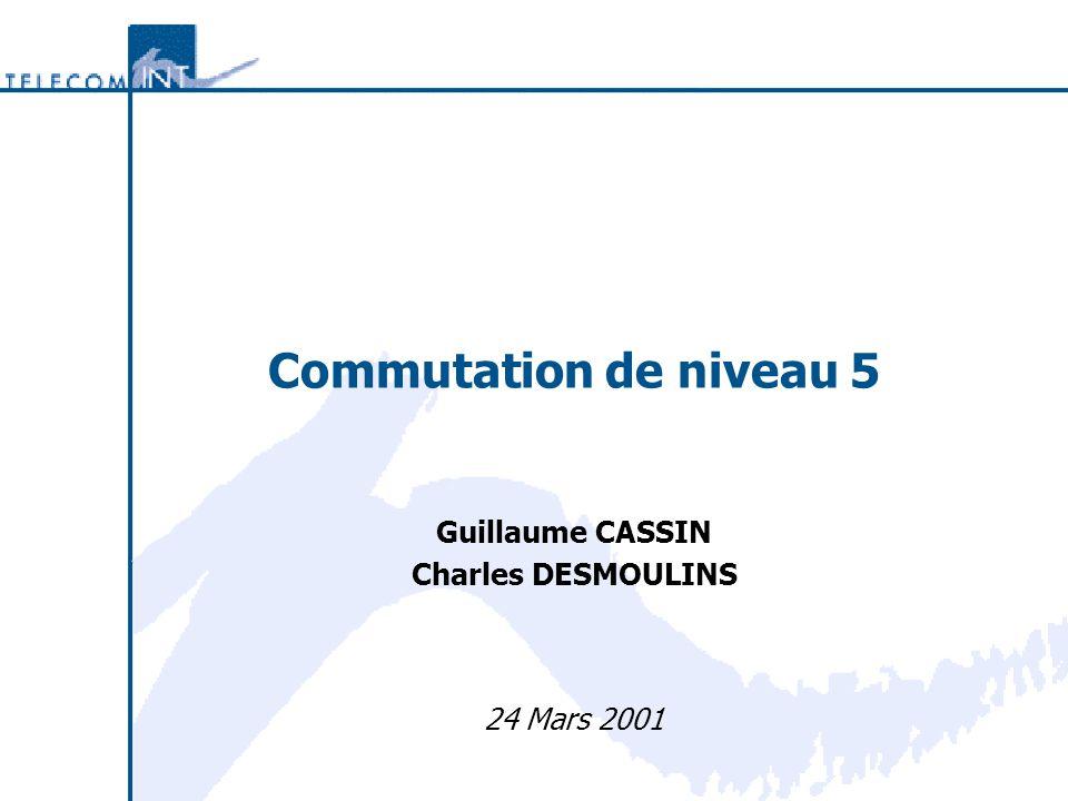 Commutation de niveau 5 Guillaume CASSIN Charles DESMOULINS 24 Mars 2001