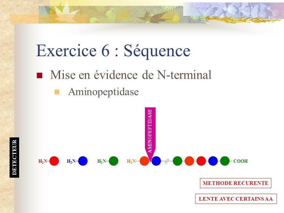 Exercice 6 : Séquence Mise en évidence de N-terminal Aminopeptidase H2NH2N COOH AMINOPEPTIDASE DETECTEUR H2NH2NH2NH2N H2NH2N METHODE RECURENTE LENTE A