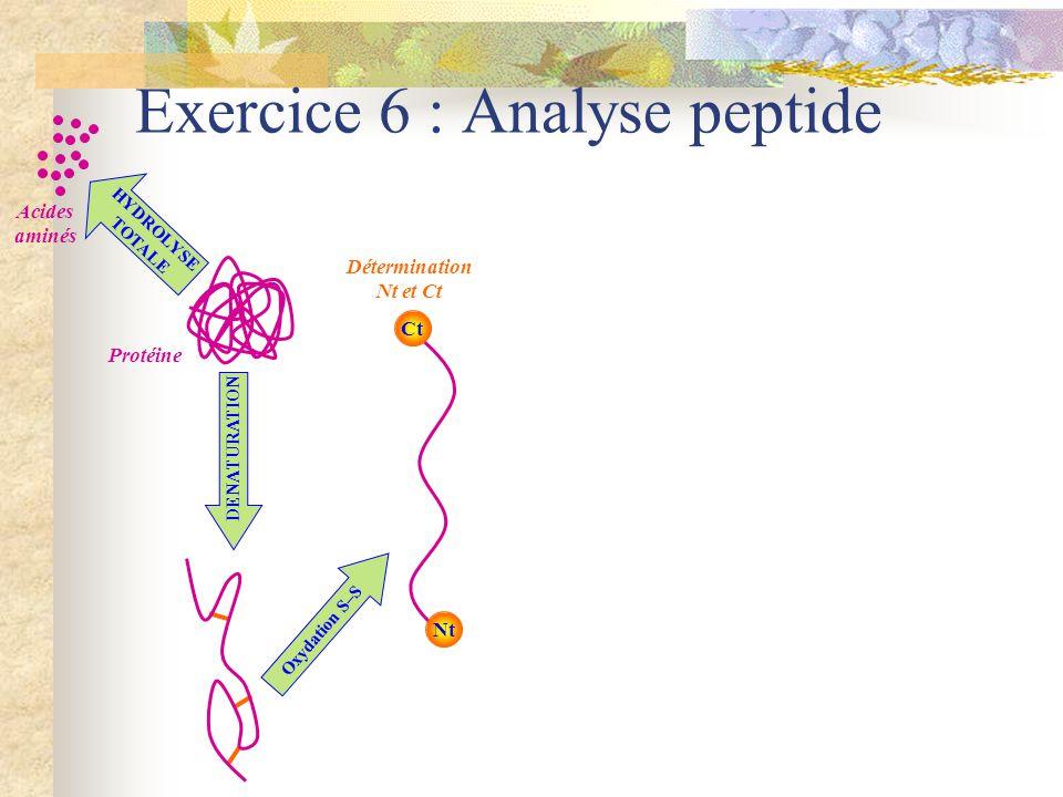 Exercice 6 : Séquence Mise en évidence de N-terminal Aminopeptidase H2NH2N COOH AMINOPEPTIDASE DETECTEUR H2NH2NH2NH2N