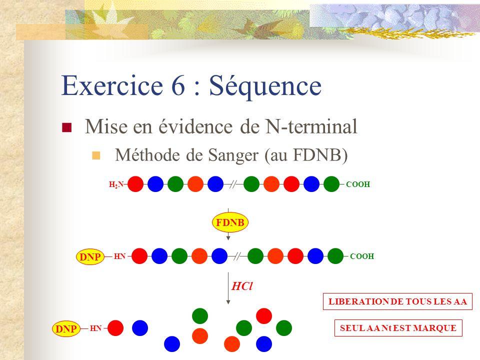 Exercice 6 : Séquence Mise en évidence de N-terminal Méthode de Sanger (au FDNB) H2NH2N COOH HN COOH DNP FDNB HN DNP HCl LIBERATION DE TOUS LES AA SEU