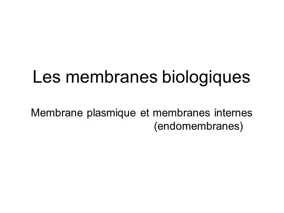 Les membranes biologiques Membrane plasmique et membranes internes (endomembranes)