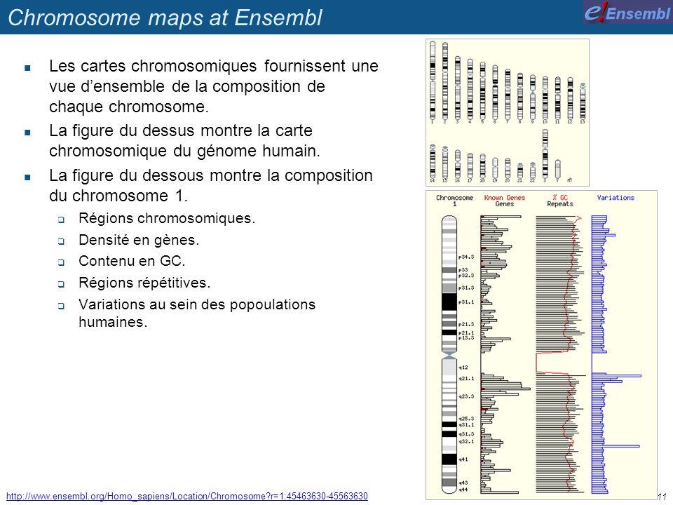 Chromosome maps at Ensembl Les cartes chromosomiques fournissent une vue densemble de la composition de chaque chromosome. La figure du dessus montre