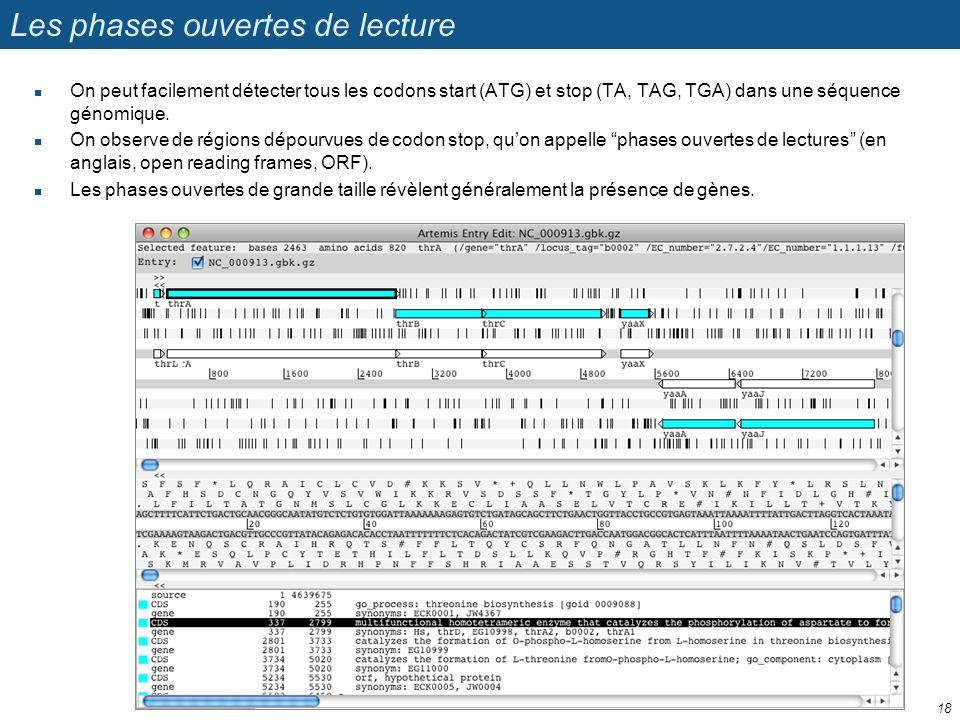 Les phases ouvertes de lecture On peut facilement détecter tous les codons start (ATG) et stop (TA, TAG, TGA) dans une séquence génomique. On observe
