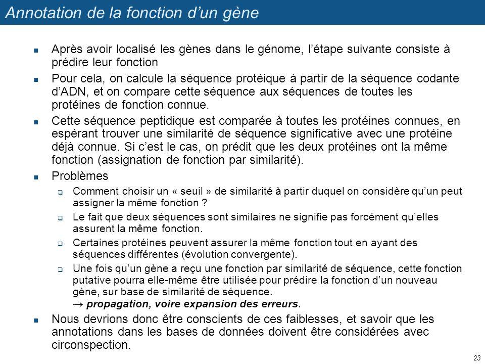 Annotation de la fonction dun gène Après avoir localisé les gènes dans le génome, létape suivante consiste à prédire leur fonction Pour cela, on calcu