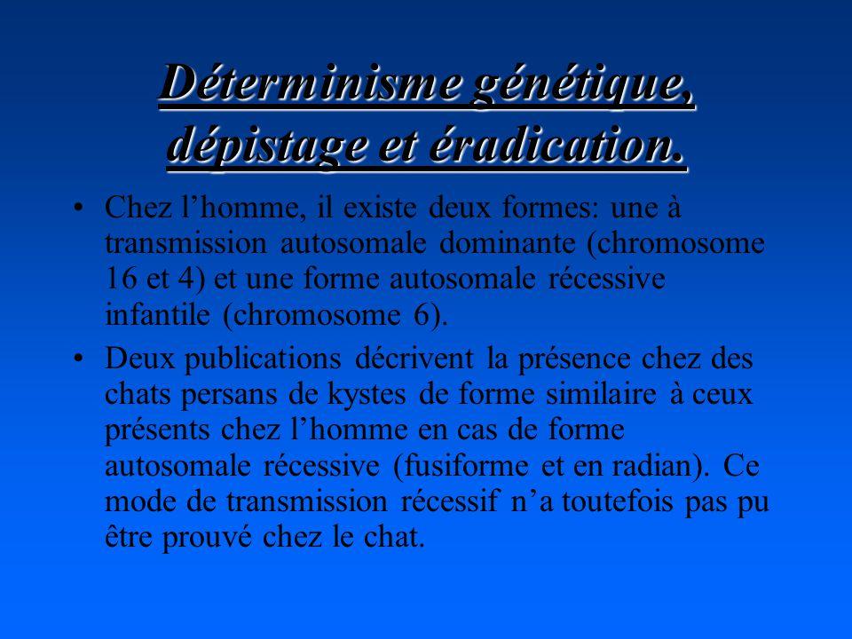 Chez lhomme, il existe deux formes: une à transmission autosomale dominante (chromosome 16 et 4) et une forme autosomale récessive infantile (chromosome 6).