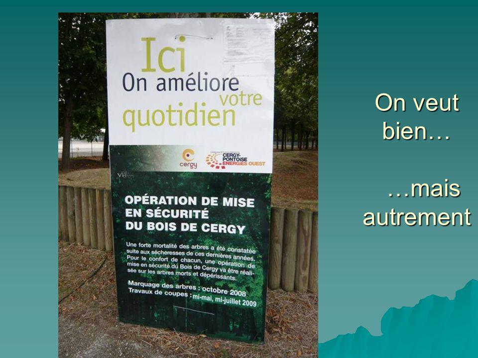 L'ÉTÉ DIFFICILE DU BOIS DE CERGY