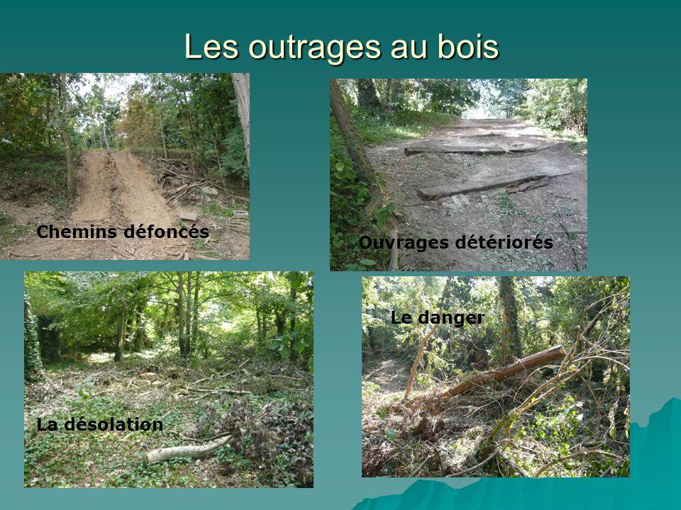 Les outrages au bois Chemins défoncés Ouvrages détériorés La désolation Le danger
