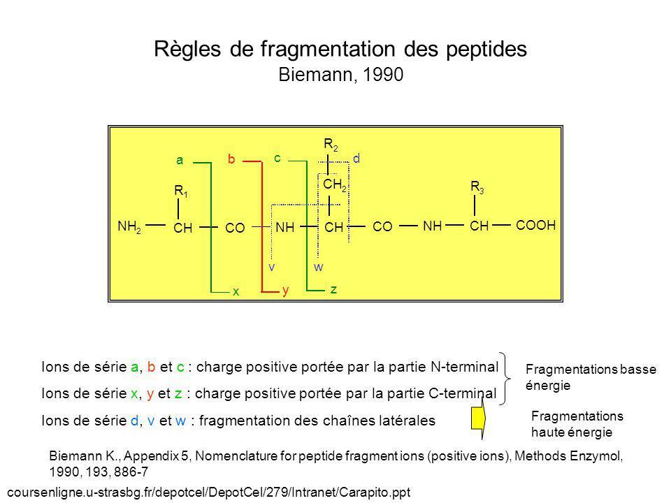CH R 1 R 2 CO NH a b c x y z 2 CH CO NH CH COOH R 3 CH 2 v w d Règles de fragmentation des peptides Biemann, 1990 Ions de série a, b et c : charge pos