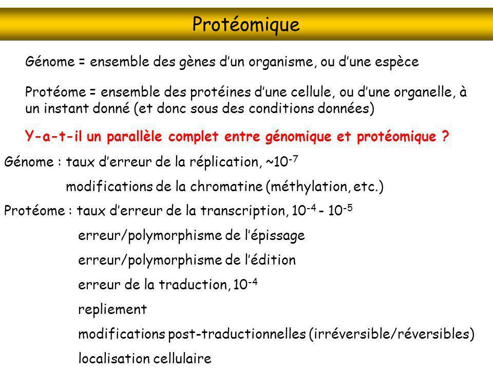Protéomique Protéome = ensemble des protéines dune cellule, ou dune organelle, à un instant donné (et donc sous des conditions données) Génome = ensem